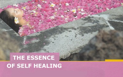 The Essence of Self Healing