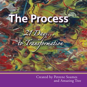 The Process: 21 Days to Transformation, by Petrene Soames